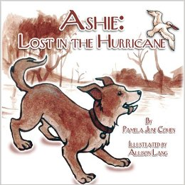 Ashie: Lost in the Hurricane