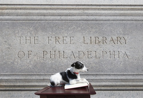 PAWS-Free-Library-01lr