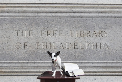 PAWS-Free-Library-02lr