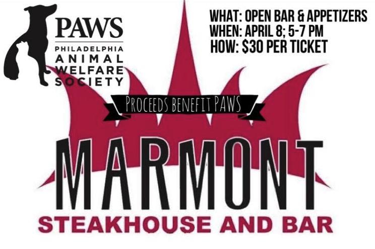 Marmont - PAWS